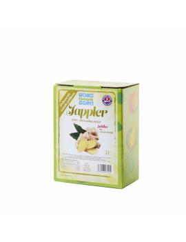Farmárik - Jablčná šťava so zázvorom - 3 L